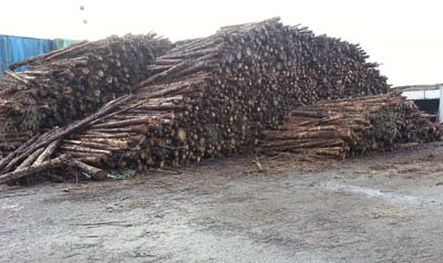 logs for sale in Cork